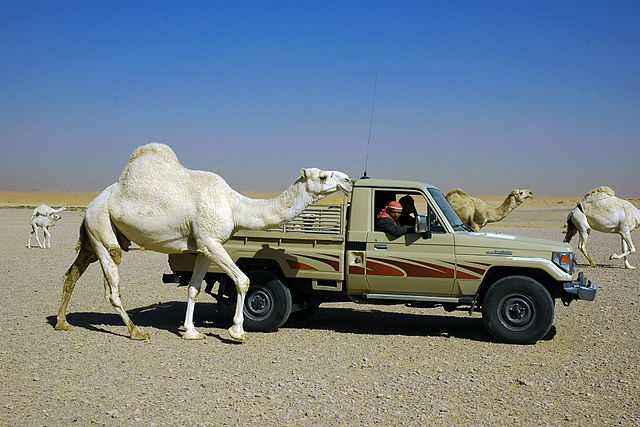 25km outside Riyadh in Saudi Arabia
