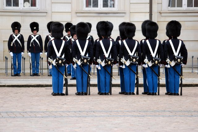 Royal Guard of Denmark