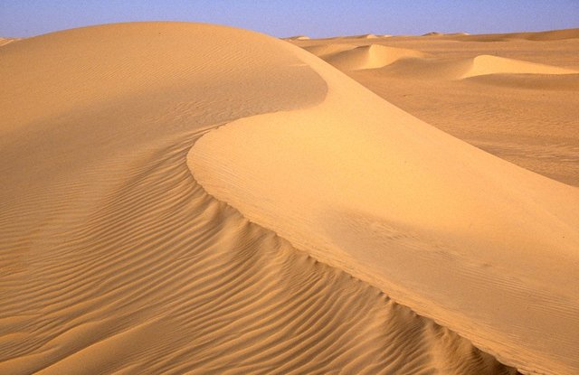 Erg of Bilma in the east of Niger.
