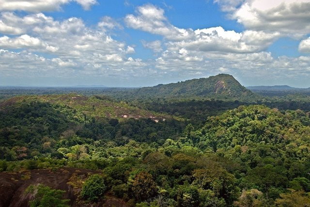 Mt. Volzburg in Suriname