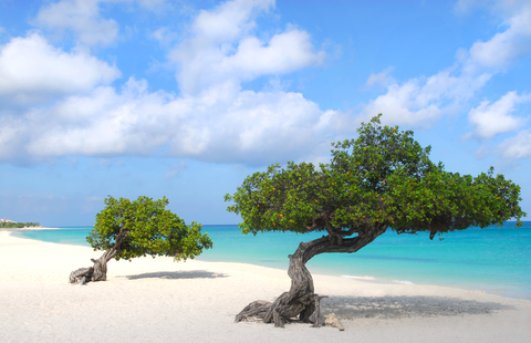 Aruba Residence Permit