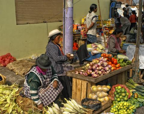 Ecuador Commercial Activities Visa