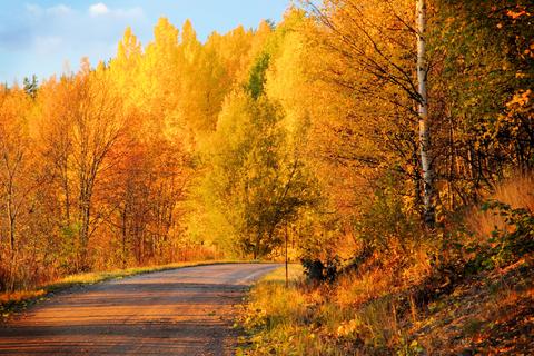 Finland Transit Visa