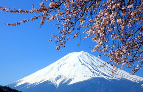 Japan Diplomatic Visa