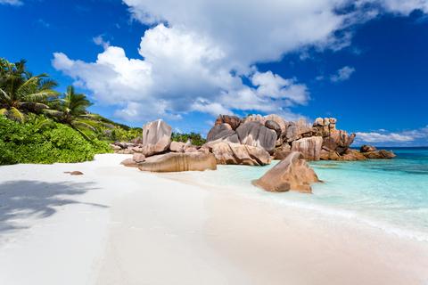 Seychelles Business Visa